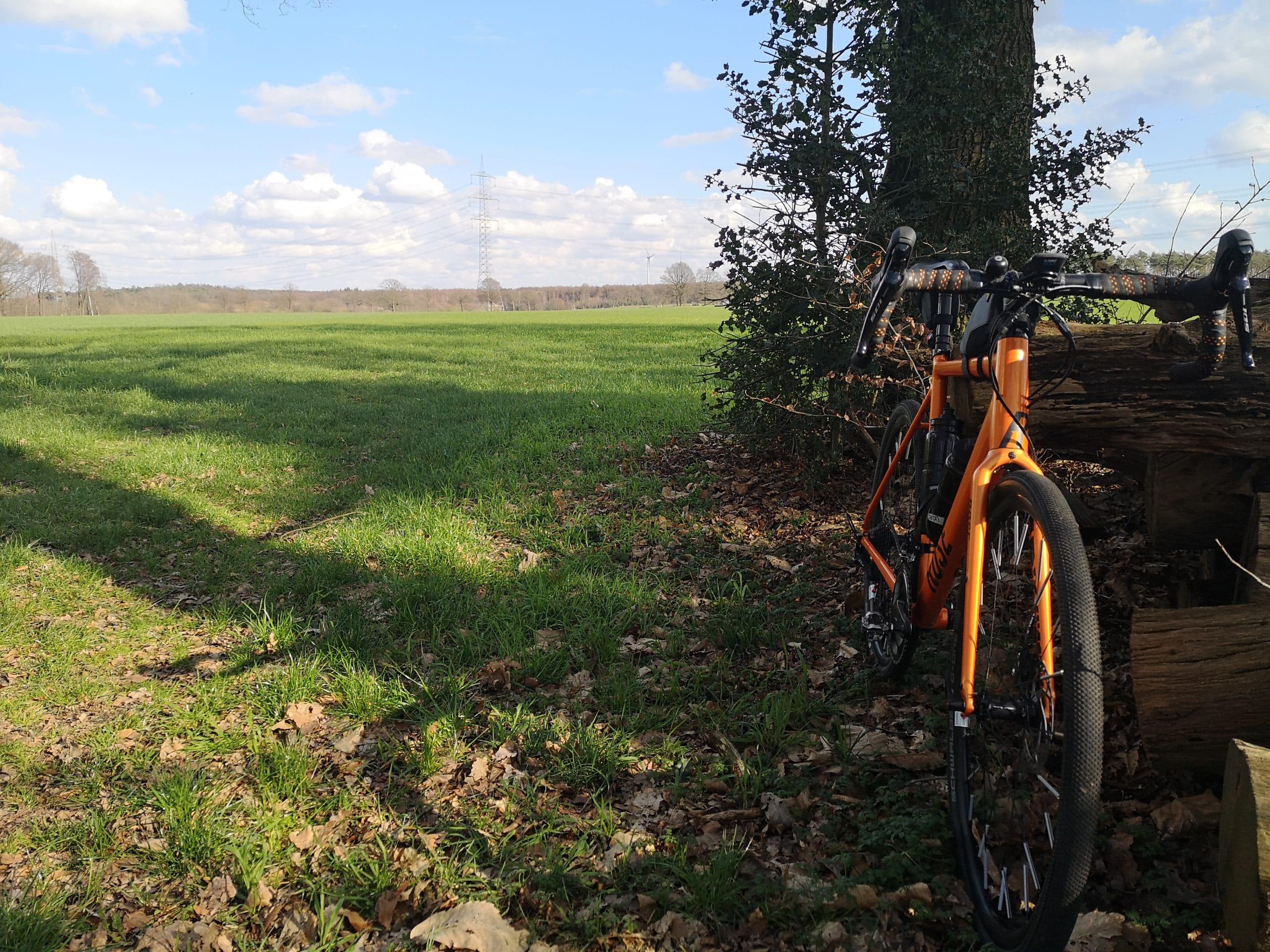 Fahrrad an einen Baumstamm gelehnt vor einem Feld